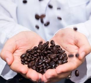 Auditor intern calitate și siguranța alimentului conform  ISO 9001:2015-ISO 22000:2018