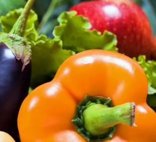 Vegan standard – Prezentare cerinte