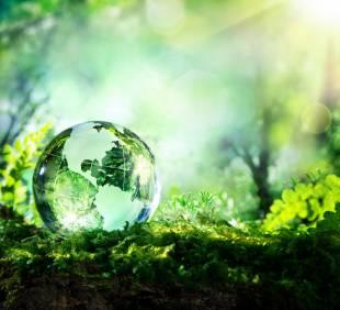 ISO 14001:2015 Cerinte pentru implementare